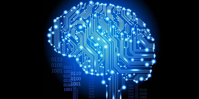 the digital brain