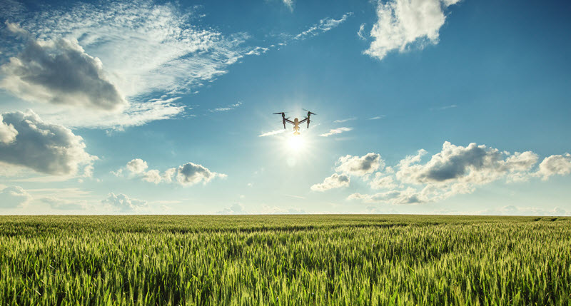 a drone filming a crop field