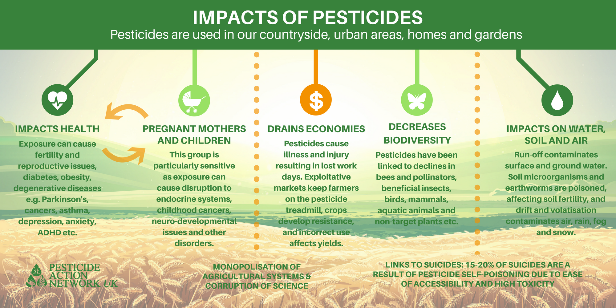 negative health effect of pesticide use