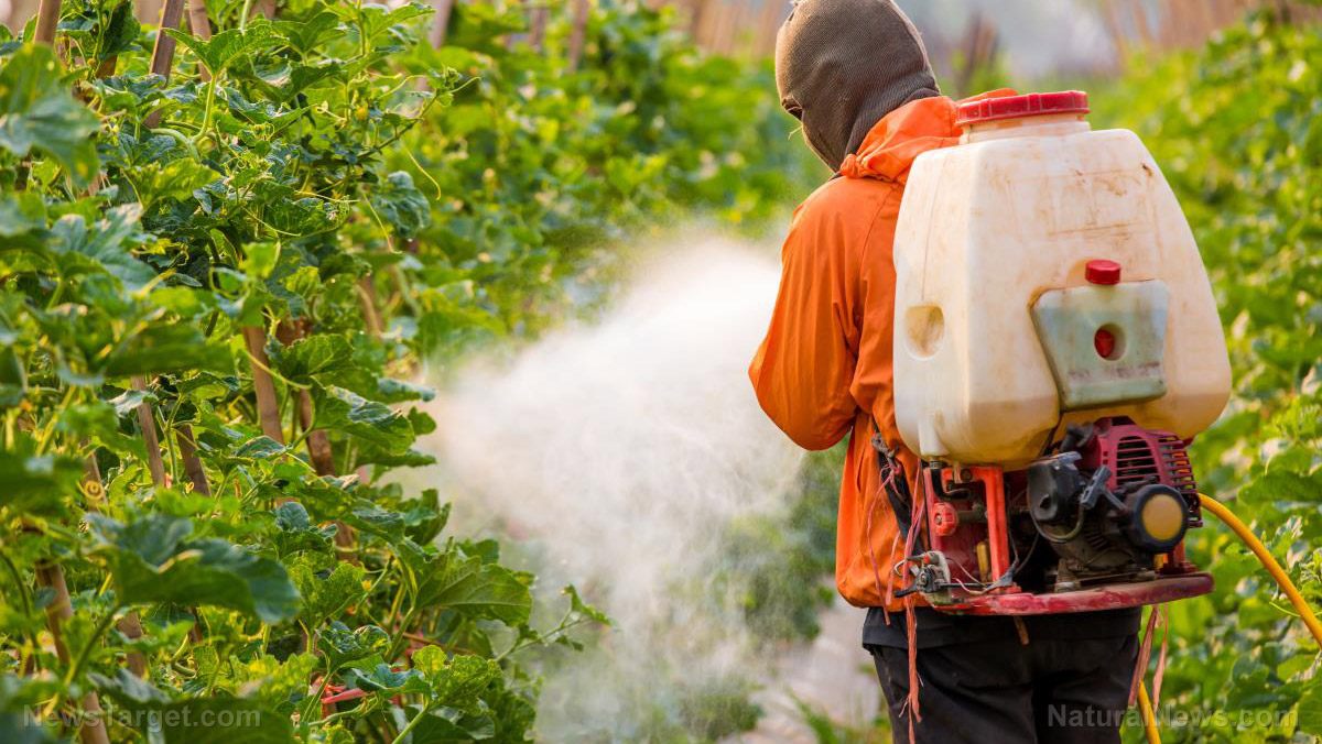 How to find an alternative to pesticide use using AgTech