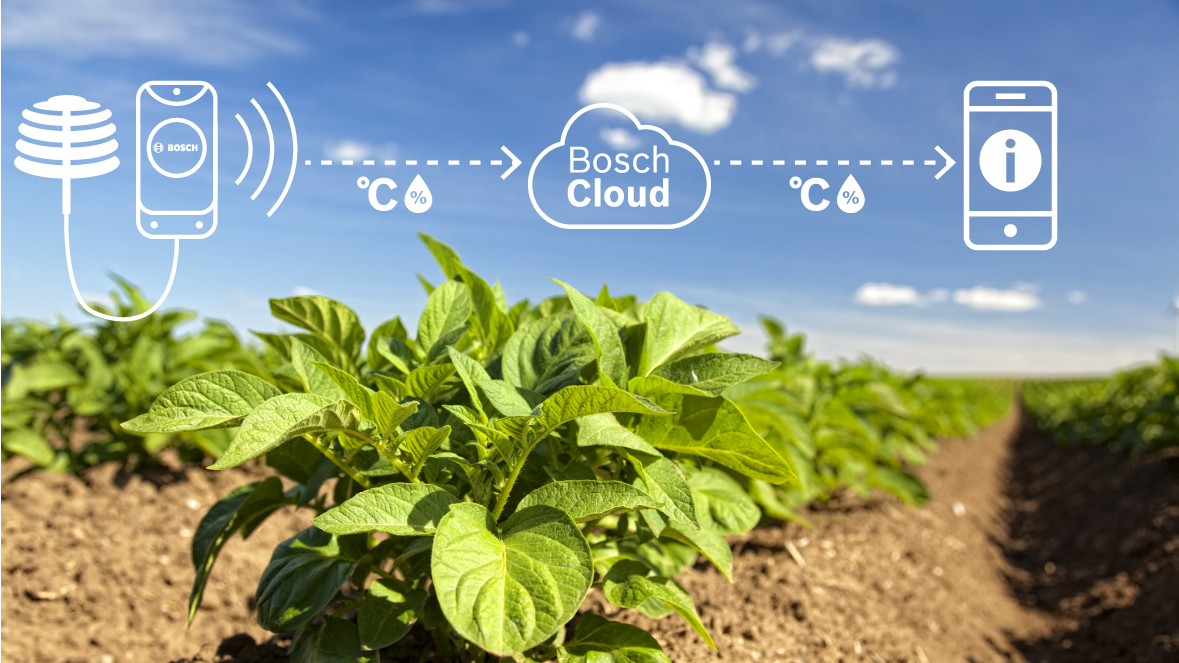 using cloud-based technology to increase farming efficiency