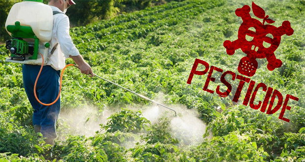 the benefits of pesticide use for farmers