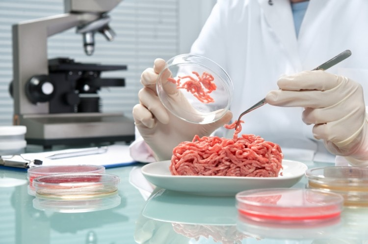 how scientists manufacture artificial meat burgers