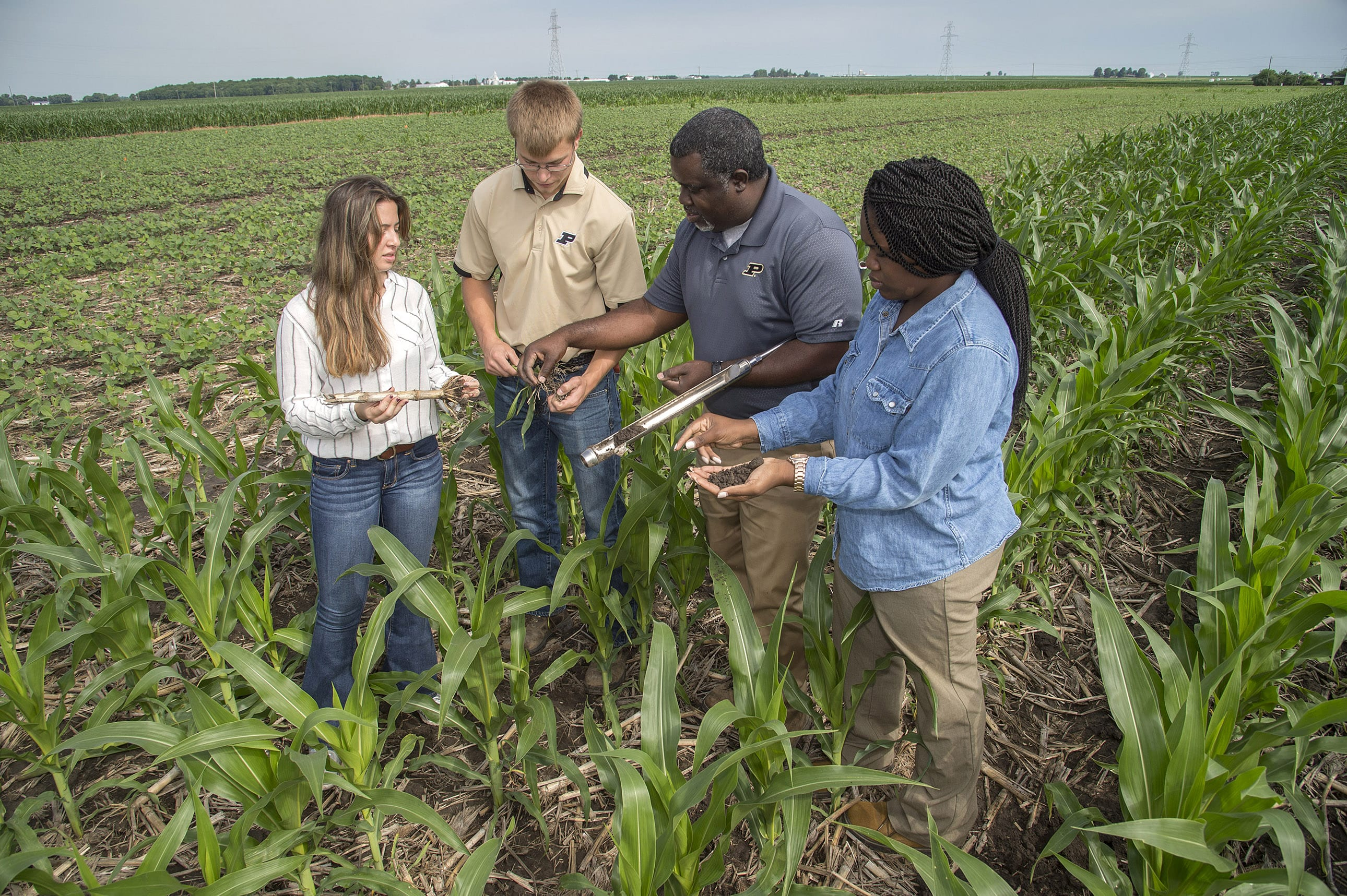farmers collaborating on solving agriculture problems